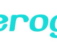 beroga-example