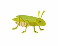 Grasshopper-5_5-Inch