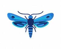 Blue-Moth-Stitched-5_5