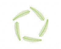 SimpleWreath 3 5_5 in