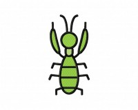 Mantis 5_5 in